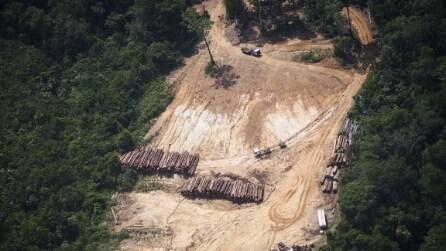 Moratoria sulla soia, il Brasile salva l'Amazzonia dalla deforestazione