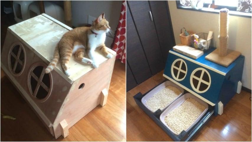 Mobili Per Gatti Fai Da Te : Come costruire una lettiera per gatti l idea geniale a prova di
