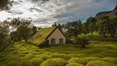 Le 7 case col tetto verde più suggestive della Scandinavia