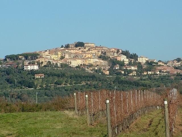 https://commons.wikimedia.org/wiki/File:Castagneto_008.jpg