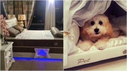 Un letto così non si è mai visto: la loro invenzione vi sorprenderà