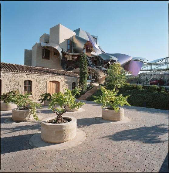 L'hotel fu concepito in origine come castello vinicolo del ventunesimo secolo nella regione La Rioja Alavesa, ricca di vigneti, ed è l'unico hotel progettato da Frank O. Gehry.