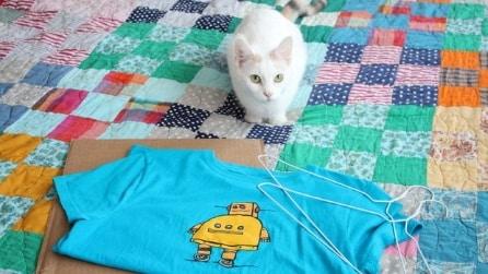 Riciclare una vecchia T-shirt in modo creativo: un progetto per i vostri amici a 4 zampe