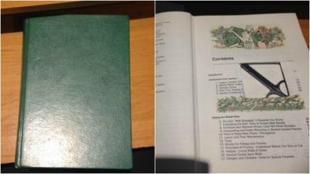 Come riciclare un vecchio libro in modo semplicissimo: un'idea originale