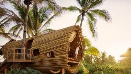 È una casa sull'albero unica al mondo: ecco le immagini