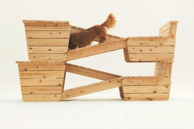 Kenya Hara è direttore creativo di Muji e ha ideato una piattaforma dove i proprietari di cani possono scaricare i modelli per costruire oggetti che possono piacere ai propri animali domestici, come questa struttura per il gioco.