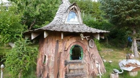 Le migliori abitazioni scavate nei tronchi d'albero giganti