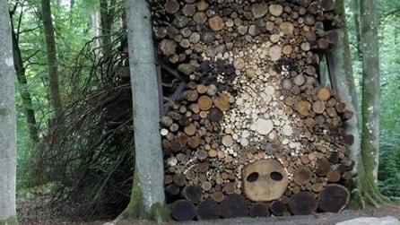 Vi sembrerà solo un ammasso di tronchi di legno ma sono fantastiche opere d'arte