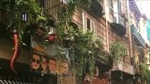 Sorbillo, nuovo tentativo di scasso nella sede storica