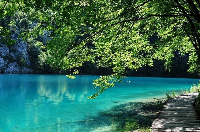 https://pixabay.com/en/plitvice-lakes-croatia-water-green-319261/