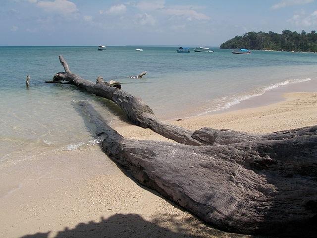 https://commons.wikimedia.org/wiki/File:Wandoor_Beach_Andaman_4160169.JPG