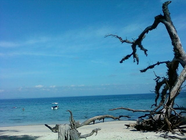 https://commons.wikimedia.org/wiki/File:Wandoor_Beach,_Andaman_and_Nicobar_Islands..jpg