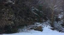 Neve a Napoli, cadono fiocchi in diverse zone della città
