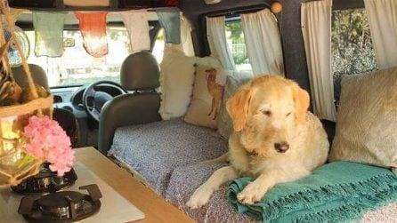 Trasforma il furgone nella casa ideale per sé ed il suo cane