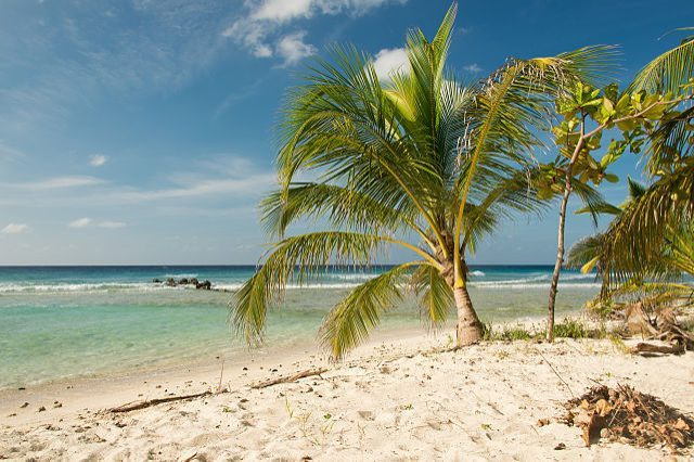https://commons.wikimedia.org/wiki/File:Drill_Hall_Beach_Barbados.jpg