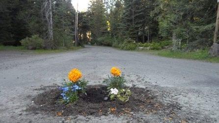 L'arte che ripara le buche stradali con i fiori