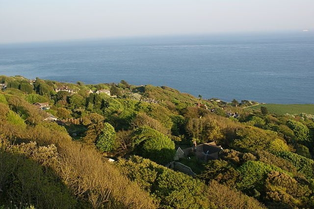 https://commons.wikimedia.org/wiki/File:Niton_Undercliff_from_Isle_of_Wight_Coastal_path.JPG