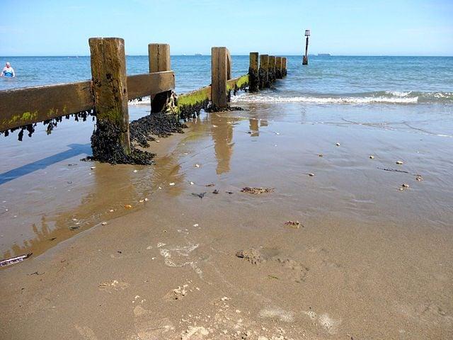 https://commons.wikimedia.org/wiki/File:Shanklin_Beach,_Isle_of_Wight_-_geograph.org.uk_-_1709071.jpg