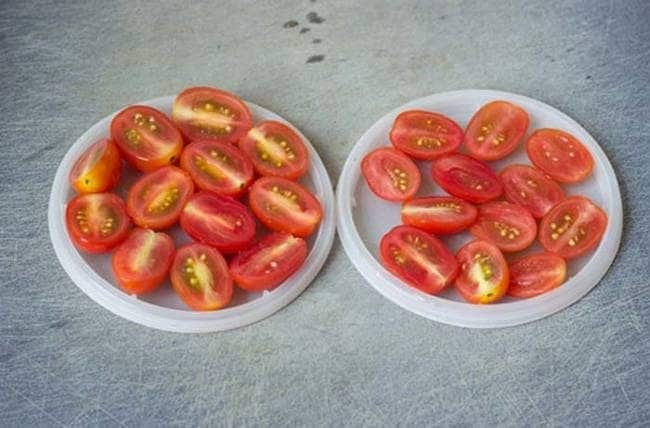 To cut cherry tomatoes fast, just sandwich a handful of them among two plastic dishes and then use a knife to slice between the containers.