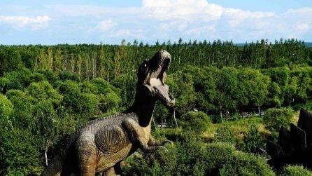 Cina, il parco dei dinosauri di Jiayin sembra Jurassic Park