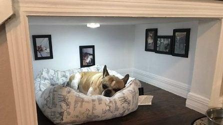 Costruisce un'intera stanza per il suo cane nel sottoscala: la realizzazione è perfetta