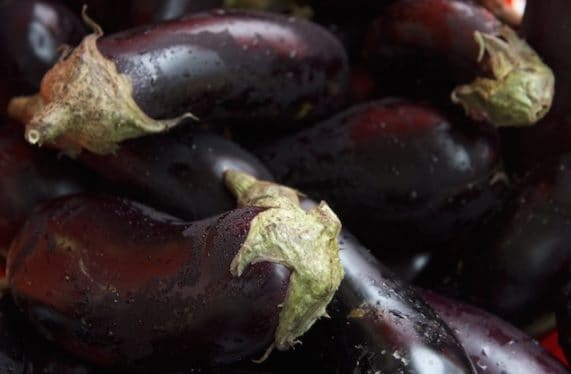 Today, eggplant has gotten rid of the spines, is larger and purple-colored.