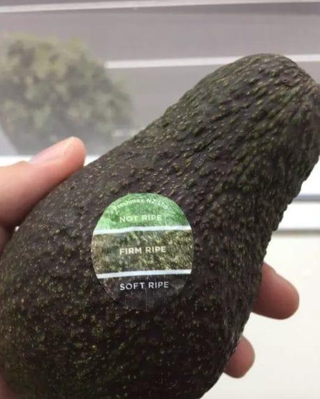 Guardate il colore del frutto e poi quello dell'adesivo, capirete a che punto è la maturazione.