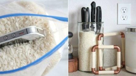 I 9 usi insoliti del riso: le potenzialità nascoste che non tutti conoscono