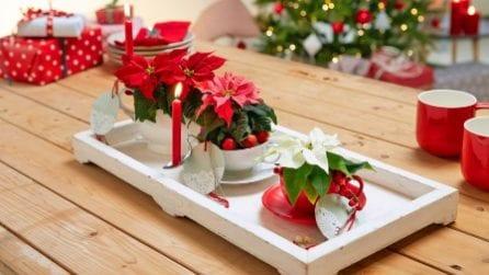 15 modi per decorare casa con le Stelle di Natale
