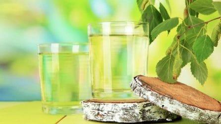 Bevande naturali prodotte dalle piante