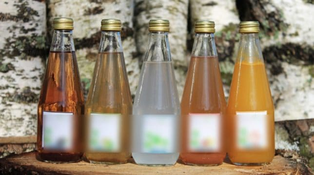 Varie bevande ricavate dalla linfa di betulla e dalle foglie d'acero.