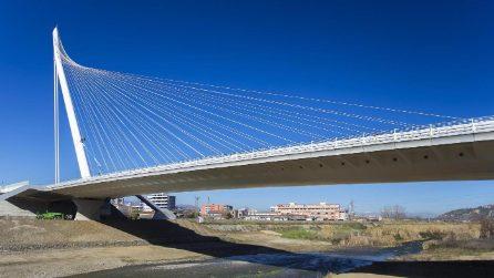 Il ponte di Calatrava a Cosenza, il più alto d'Europa