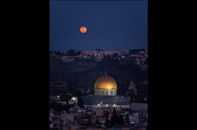 Gerusalemme: Credit Hananya Naftali https://twitter.com/HananyaNaftali/status/958815166879191040