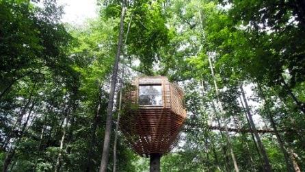 Sembra una casa sull'albero comune ma gli interni sono sbalorditivi