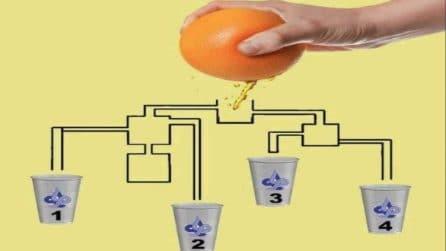 Il succo d'arancia cade nei bicchieri, ma solo uno si riempie: riesci a individuarlo?