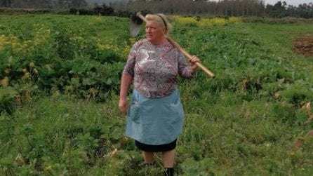 Le scattano una foto mentre lavora nei campi: dopo poche ore diventa famosa in tutto il mondo