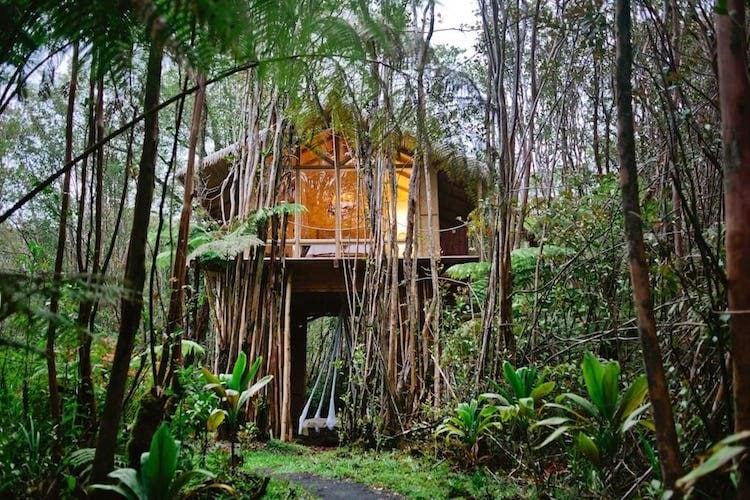 Segui la strada di roccia vulcanica rossa fino a questo baldacchino isolato della giungla. Situato alla periferia del Parco Nazionale dei Vulcani delle Hawaii, nella Big Island, gli ospiti dicono che la casa sull'albero è lontana dal pericolo ma vicina all'avventura.