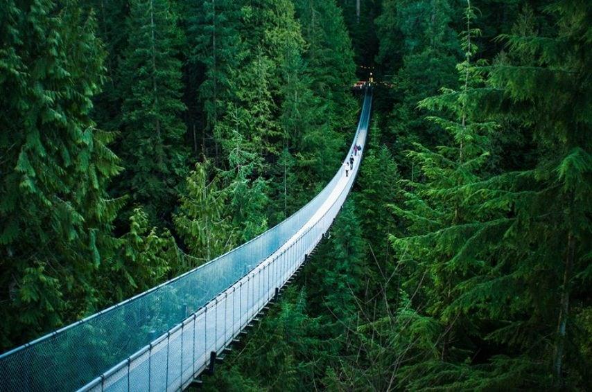 Il Capilano Suspension Bridge è situato a nord di Vancouver, nella British Columbia, sul fiume Capilano ed è anche considerato come una delle sospensioni più pericolose del mondo.