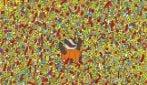 Riesci a trovare la bacchetta magica tra le caramelle?