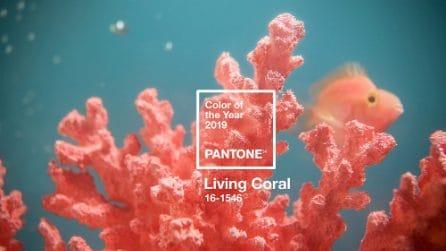 Living Coral, il colore Pantone 2019 nella moda e nel make up