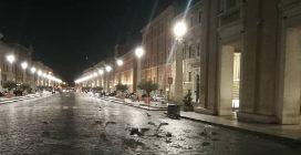 San Pietro, via della Conciliazione invasa dai gabbiani