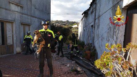 Catania, tre cuccioli di cane salvati dopo il terremoto