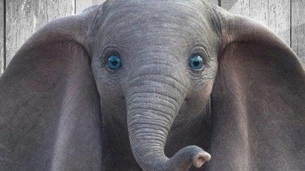 I poster di Dumbo con tutti i protagonisti