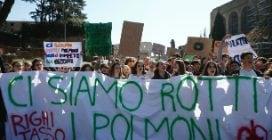 Cortei in difesa del cima, ecco i cartelli più significativi in giro per l'Italia