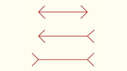 Qual è la freccia più lunga delle tre? Osservate bene l'immagine e lo scoprirete