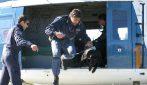 Addio a Gino, uno dei primi cani in servizio nell'Unità cinofila di Bari