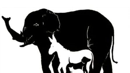 Quanti animali riuscite a vedere? Non lasciatevi ingannare!