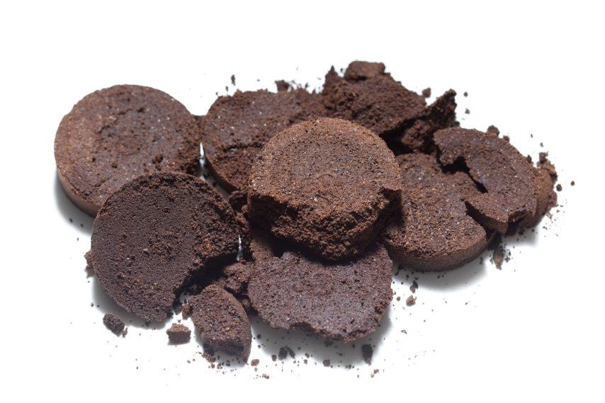 Conservate i fondi del caffè e metteteli in un contenitore aperto o anche nelle vostre piante.