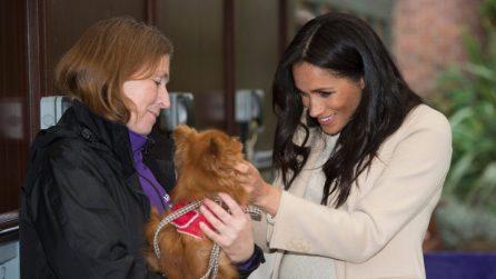 Meghan Markle e l'amore per gli animali