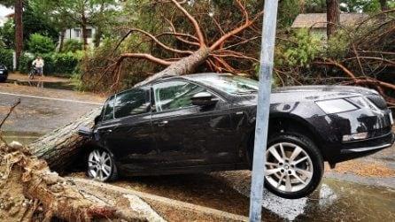 Maltempo Milano Marittima: la tempesta devasta tutta l'area